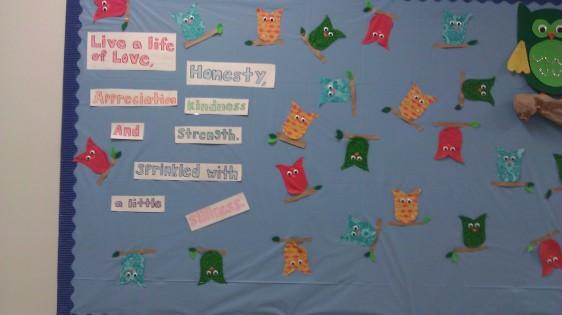 Owls in School