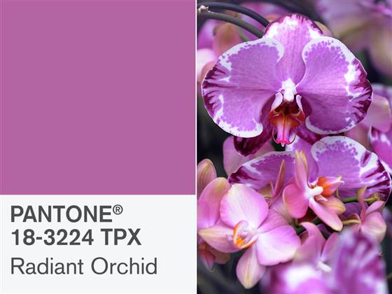 Radiant Orchid – Pantone Color of the Year 2014